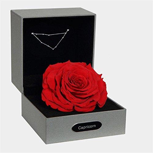 P-H BALSCW Preserved Fresh Flower 12 Constellation Eternal Rose for Birthday Girl Creative Gifts, Capricorn capricorn12.22-1.19