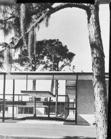1957 photo Riverview High School, Sarasota, Florida. Looking into courtyard g d9 (Shop Art Sarasota Frame And)