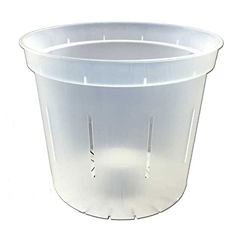 Slotted Clear Orchid Pots Crystal