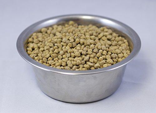 Wysong Vegan Dog Food Reviews