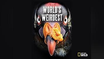 Watch Worlds Deadliest Season 2 | Prime Video