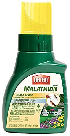 Ortho Max Malathion Concentrate Insect Spray (Case of 6), 16 oz - Ortho Garden Disease Control