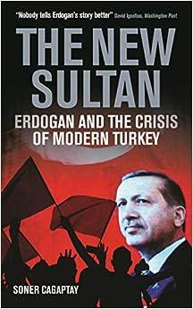 The New Sultan: Erdogan And The Crisis Of Modern Turkey Epub Descarga gratuita