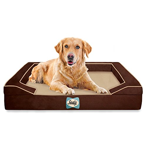 Sealy Lux Pet Dog Bed | Quad Layer Technology with Memory Foam, Orthopedic Foam, and Cooling Energy Gel. Machine Washable Cover. Large, Autumn Brown