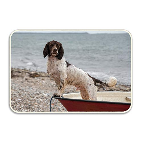 Cecil Beard Custom Animal Springer Spaniel Dogs Doormat Door Welcome Mat Rug Cover Sign Outdoor Indoor Floor Mats Non-Slip