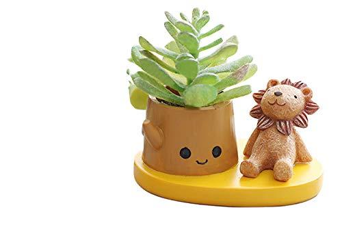 Cute Resin Animal Lions Meaty Pot by SWONVI, Succulent Pots with Drainage Resin Mini Flower Pot Garden Plants Vase Desk Flower Decoration 4.1