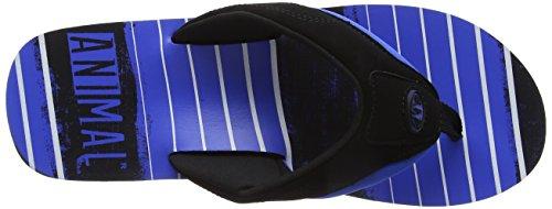 Jekyl Animal Torn Sandalias Victoria para Azul Blue Hombre dUUrSP