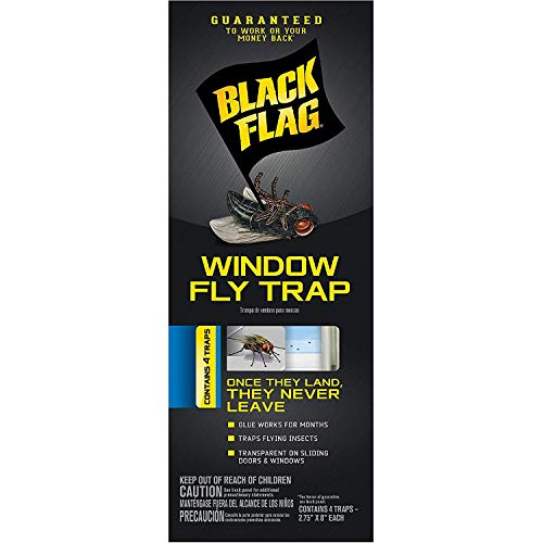 Black Flag HG-11018 Window Fly Trap, Pack of 1, - Mirrors Bathroom Gnats On