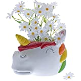 Rainbow Unicorn Ceramic Container Plant Pot Planter