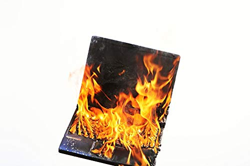 Home Comforts Laminated Poster Burnout Laptop Profession Fire Stress Voltage Vivid Imagery Poster Print 11 x 17