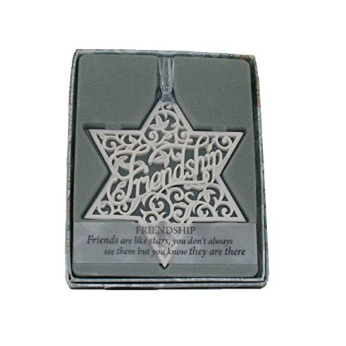 Delicate Words 1930011 Friendship - Christmas Ornament Friendship