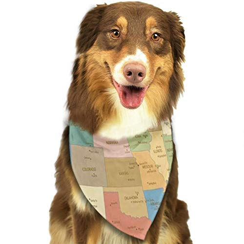HJudge Dog Bandana Old Retro Color Map of United States Dog Scarf Fantastic Pet Accessories