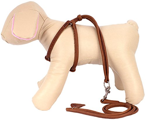 Pictures of CollarDirect Rolled Leather Dog Harness Small Puppy 6