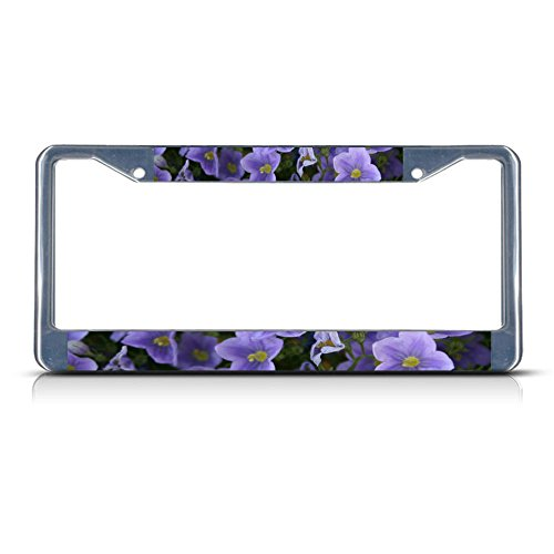 Western Blue Flax Flower Metal License Plate Frame Tag Border Perfect for Men Women Car garadge -
