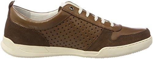 Cammello Attivo Herren Light 11 Sneaker Braun (bisonte)