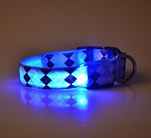 CoCocina LED Dog Collar Flashing Light to Keep Your Dog Safe Various Color and Size ()