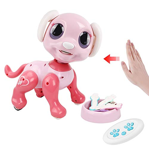 Tuptoel Robot Dog