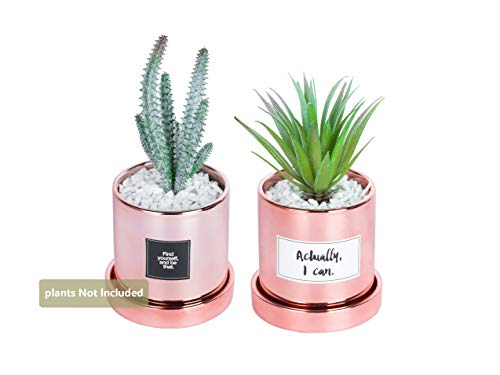 Opps Rose Golden Ceramic Succulent Plant Garden Pots with Saucers (4-Inch) – Pack of 2 by Opps