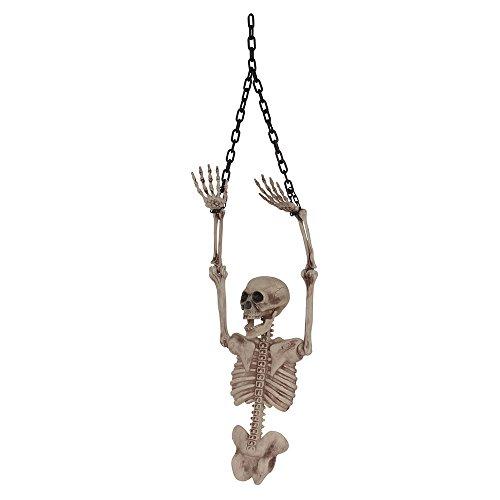 Bristol Novelty HI360 Skeleton Torso (Half), Multi-Colour, One Size