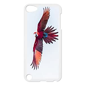 Funny Parrot,Cute Bird Protective Case 150 FOR Ipod Touch 5 At ERZHOU Tech Store