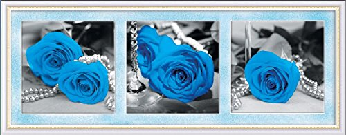 Rose Oil Painting (Pack of 3 [WOODEN FRAMED] Diy Oil Painting Paint by Number Kit for Adult - Blue Rose 20x20 Inch)