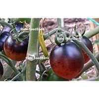 Portal Cool Indigo cereza Gotas de tomate