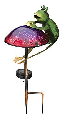 Frog Solar Garden Lights in US - 6