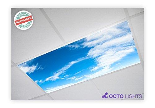 Cloud 010 2x4 Flexible Fluorescent Light Cover