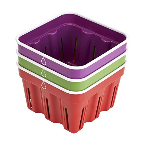 May Day Baskets (Crisp Kitchen Storage Berry Basket,)