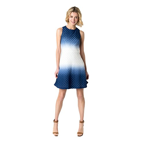 Dip Dye Tank Dress - Women's Dip Dye Lace Tank Dress by Sami & Dani (14, Blue/Ivory)