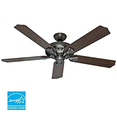 Hunter Fan Company The Royal Oak 60-Inch Ceiling Fan with Five Blades
