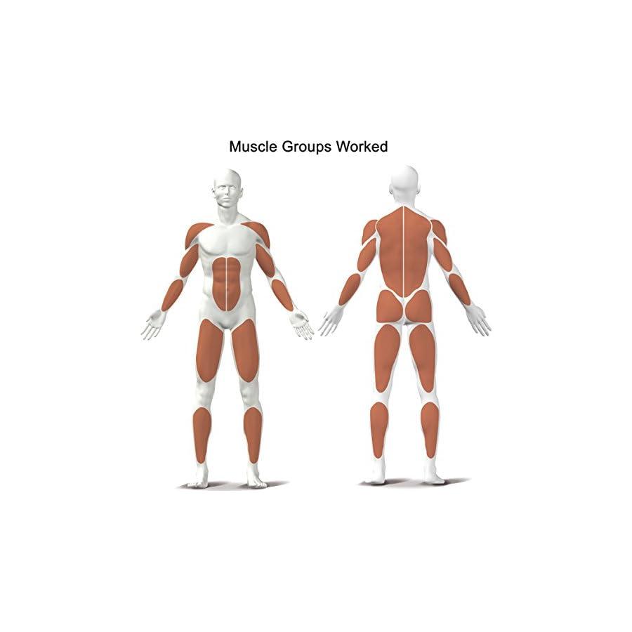 Kettler Home Exercise/Fitness Equipment: Stroker Rower and Multi Trainer Machine