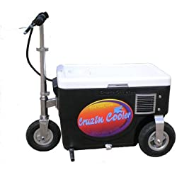 Cruzin Cooler 50-Series 500-Watt Electric Scooter (Black)