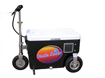 41pzQh2CZVL._SX355_ amazon com cruzin cooler 50 series 500 watt electric scooter cruzin cooler wiring diagram at panicattacktreatment.co