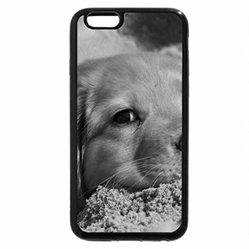 iPhone 6S Plus Case, iPhone 6 Plus Case (Black & White) - Dog