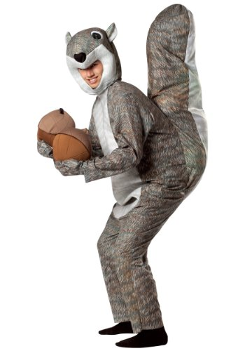 Different Halloween Costumes For Couples (Rasta Imposta Squirrel Costume, Gray, One)