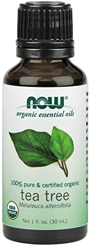 Now Foods Certified Organic Essential Oil, Tea Tree, 1 Fluid Ounce