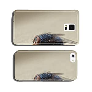Housefly macro closeup cell phone cover case iPhone5