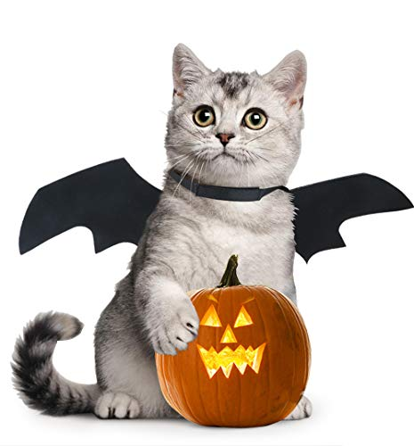 Idepet Dog Cat Bat Wings Halloween Costume,Black Cool Puppy Kittens Black Bat Transfiguration Christmas Hoilday Costume Decoration Accessories Clothes for Small Medium Dogs Cats ()