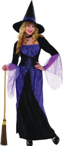 Pretty Potion Witch Adult Medium