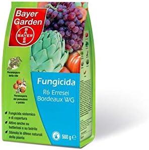 Bayer Garden R6 Burdeos WG 35 500 gr