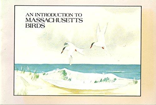 An introduction to Massachusetts birds
