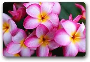 """Custom Botany Beauty Flower Doormat Outdoor Indoor 18""""x30"""" about 46cmx76cm"""