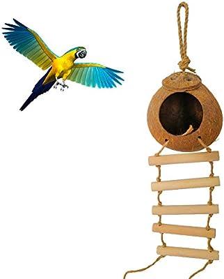 YSoutstripdu Separación Coco Shell Hamaca Loro Pájaro Mascota Nido ...