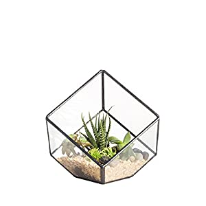 NCYP 3.93 inches Geometric Decorative Terrarium Cube Inclined Clear Glass Planter Tabletop Black Small Air Plant Holder Display Box Succulent Moss Flower Pot Containers DIY Centerpiece (No Plants) 86