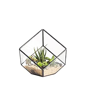 Inches geometric decorative terrarium for Geometric air plant holder