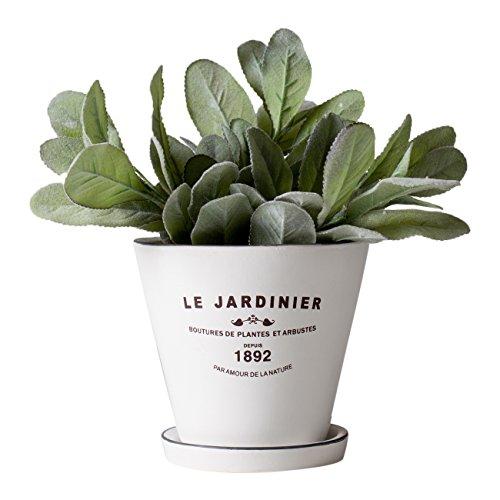 Torre & Tagus Jardinier Round 5 Inch Planter with Saucer - White,