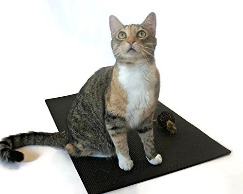 Feline Yogi Cat Mat with Catnip Cat Toy. Cat Scratching Post, Bed, Activity Play Mat (Black)
