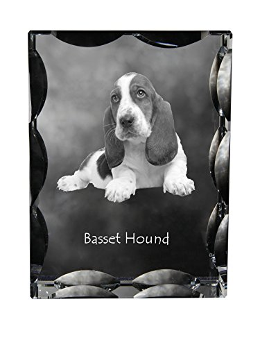 limited edition Basset Hound Collection Cubic crystal with dog ArtDog Ltd souvenir decoration
