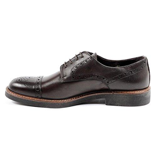 Andrew Charles Mens Brogue Shoe Brown Lou